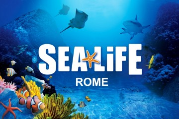 Sea Life acquarium roma