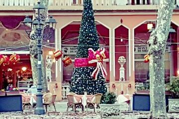 Albero di Natale in piazza centrale